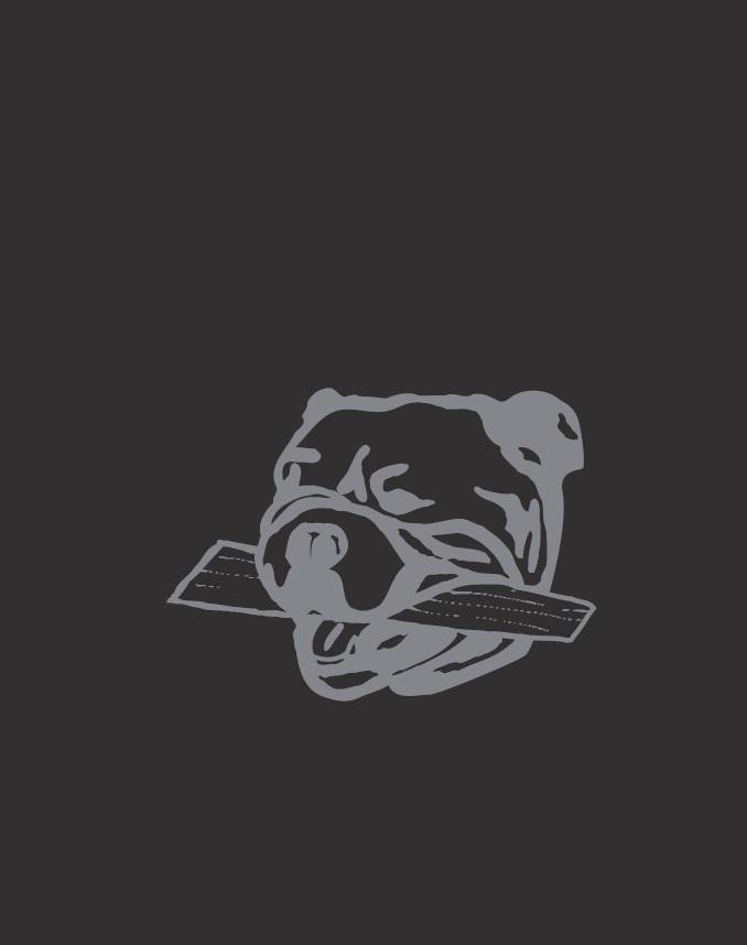 Catalogue Iron Dog 2019